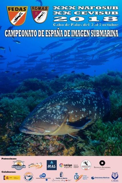 Cto. España de Imagen Submarina