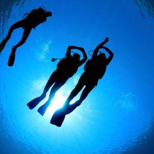 Instructor/Dive Master